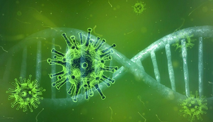 FDA Authorizes Another Covid 19 Home Test